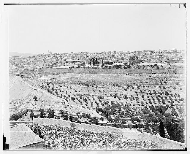Jerusalem (El-Kouds). Jerusalem from Olivet
