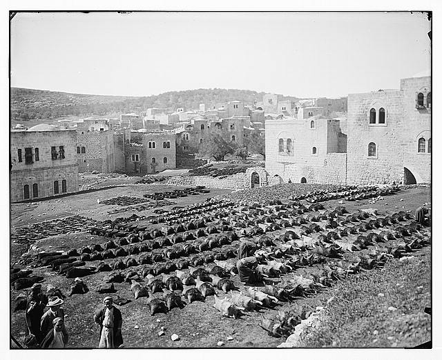 Hebron (El-Khalil). Tanning skins for water bottles