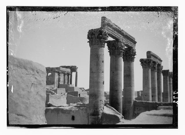 Palmyra (Tadmor). Pillars in Temple of the Sun