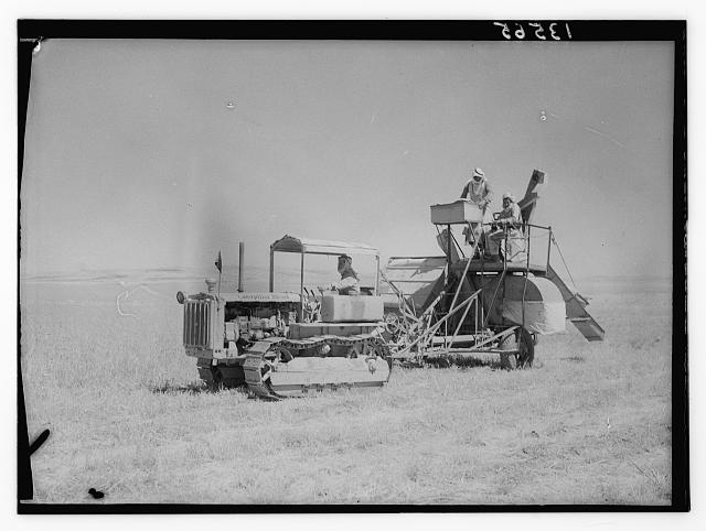 Harvester at work on Mutgal Pasha's grounds at Um-el Amad near Madeba