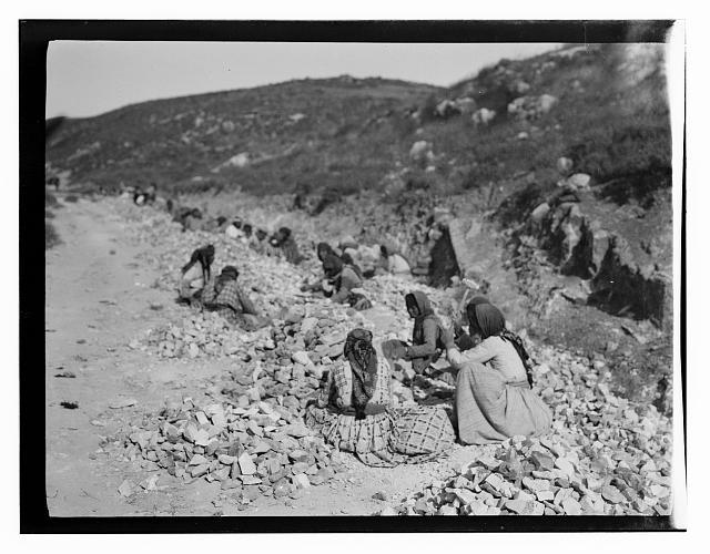North Palestine botanical trip before 1917