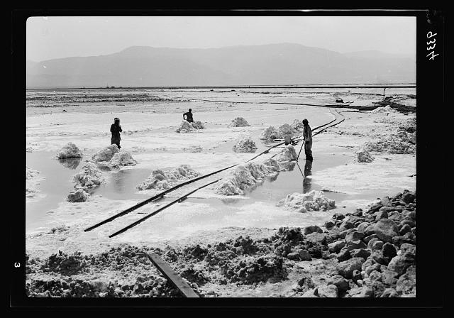 Dead Sea Album, prepared for the Palestine Potash Ltd. A vast field of carnallite being gathered into piles for loading on to the decauville cars