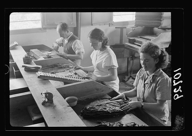 "Jewish factories in Palestine on Plain of Sharon & along the coast to Haifa. Kfar Ata, near Acre. The ""De Hoas"" cigar factory. Making cigars"