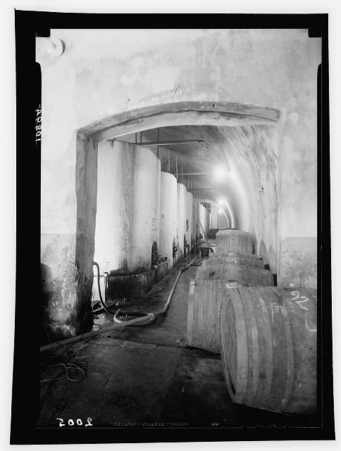 Jewish colonies and settlements. Richon le Zion. Large wine vats