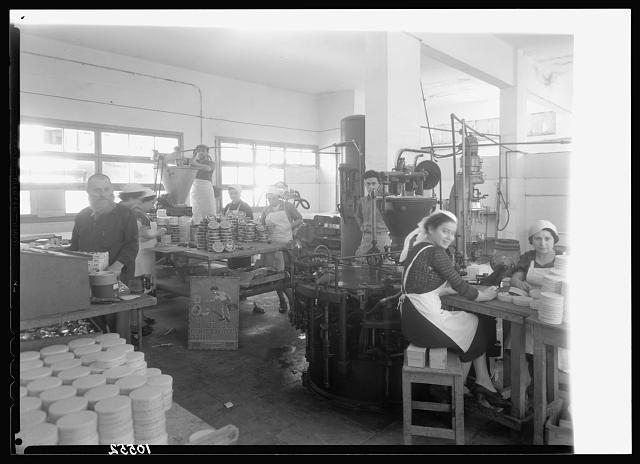 Jewish factories in Palestine on Plain of Sharon & along the coast to Haifa. Tel Aviv. Cheese factory, int[erior]