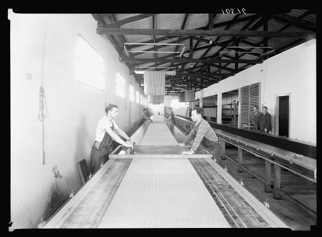 Jewish factories in Palestine on Plain of Sharon & along the coast to Haifa. Nachlat Izhak. Pattern printing on fabrics. Preparation of original designs