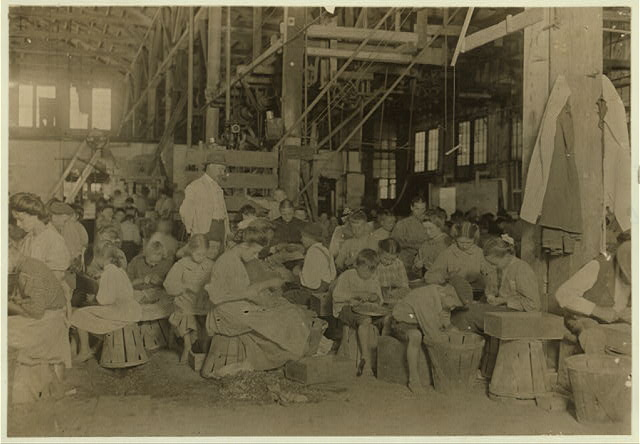 Interior of J. S. Farrand Packing Company, Baltimore, Md. Many tiny workers. Babies are held on laps of workers, or stowed away in empty boxes.  Location: Baltimore, Maryland.