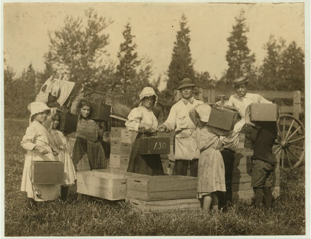 "Group of children carrying in their pecks to the ""bushel man."" We measured one of these peck boxes and found it contained 10 quarts instead of 8. Theodore Budd's Bog at Turkeytown near Pemberton, N.J. This is the fourth week of school in Philadelphia and people will stay here two weeks more. E. F. Brown [Witness].  Location: Pemberton, New Jersey."