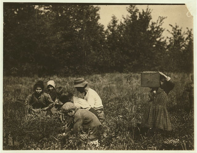 The Framo Family Forsythe's Bog, Turkeytown, near Pemberton, N.J. Sept. 29, 1910. Witness E. F. Brown,.  Location: Pemberton, New Jersey