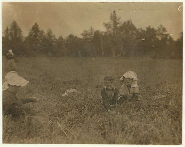 La Grossa family, 2 children and mother. Forsythe's Bog, Turkeytown, near Pemberton, N.J. Sept. 29, 1910. Witness E.F. Brown,.  Location: Pemberton, New Jersey