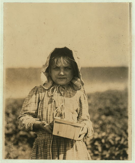 Alberta McNadd on Chester Truitt's farm at Cannon, Del. Alberta is 5 years of age and has been picking berries since she was 3. Her mother volunteered the information that she picks steadily from sun-up to sun-down.  Location: Cannon, Delaware.