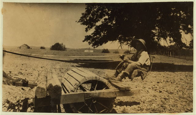 Harry Dewitt driving a roller on his father's farm. See report.  Location: West Point [vicinity], Kentucky