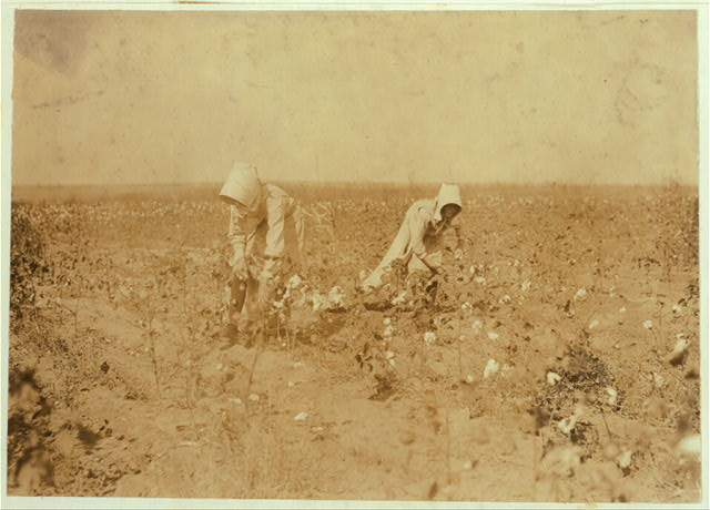Edith, 11 years old and Blanche 13. Each picks about 100 pounds of cotton a day. Go to Beaver Bend School when through. Father, W.T. Rumage, Route 1, Lawton, Okla.  Location: Comanche County, Oklahoma