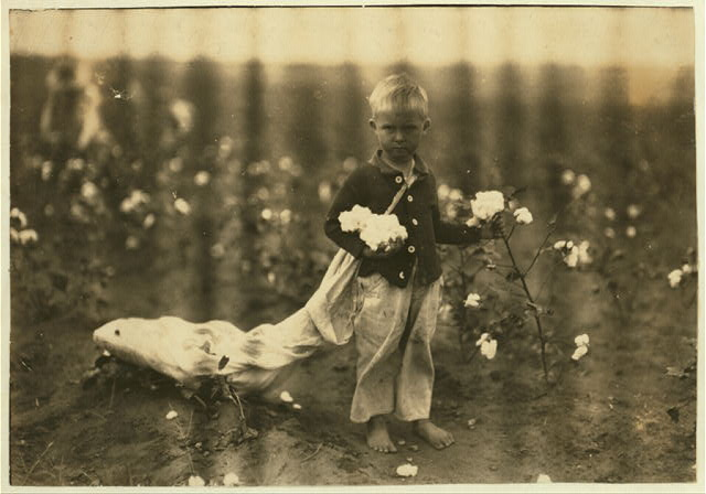 Fred Hill, 3 years old, sometimes picks 20 pounds of cotton a day. See 4580.  Location: Comanche County, Oklahoma