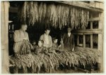 color digital file from b&w original print