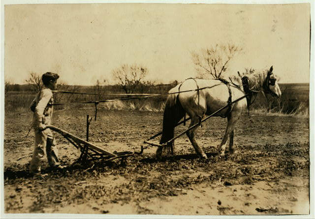 Herschel Bonham, Route A, Box 118, an 11-year-old boy cultivating peas. He belongs to a cotton club in school. Father says he can pick 200 pounds of cotton a day.  Location: Lawton, Oklahoma