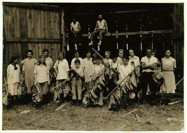 Group of shed workers at Wetstone farm, 14 of them were 12 to 14 yrs. old.  Location: Vernon, Connecticut