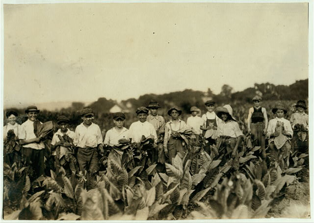 Group of pickers on Gildersleeve Tobacco Farm. Location: Gildersleeve, Connecticut.