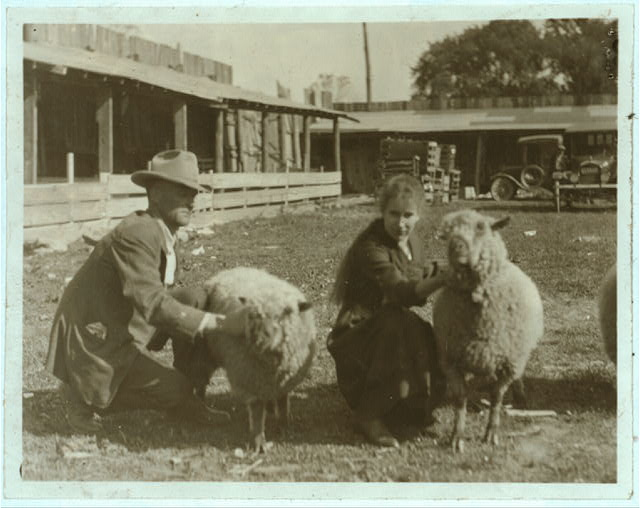 Clementine Miller (and her parents) with her sheep exhibit at the 4 H Club Fair, Charleston, W. Va.  Location: Charleston, West Virginia.