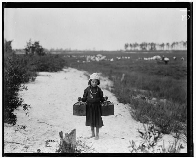 Rose Biodo, 1216 Annan St., Philadelphia. 10 years old. Working 3 summers. Minds baby and carries berries, two pecks at a time. Whites Bog, Brown Mills, N.J. This is the fourth week of school and the people here expect to remain two weeks more. Sept. 28, 1910. Witness E. F. Brown.  Location: Browns Mills, New Jersey
