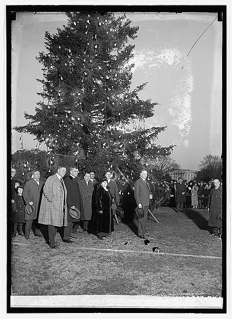 Coolidge & community Christmas tree, 12/24/23