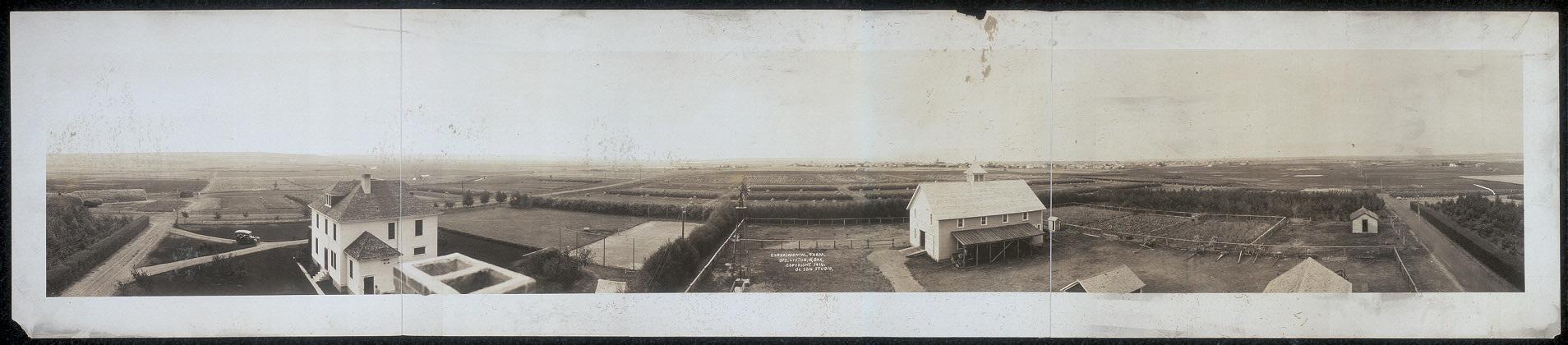Experimental farm, Williston, N. Dak.