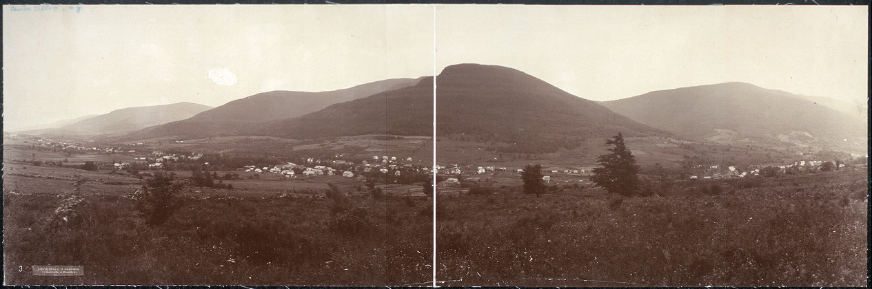Hunter Village, Catskill Mtns., N.Y.