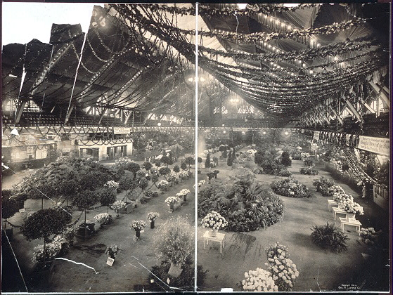 15th Annual Flower Show, Coliseum Bldg., Chicago, Nov. 7, 1906