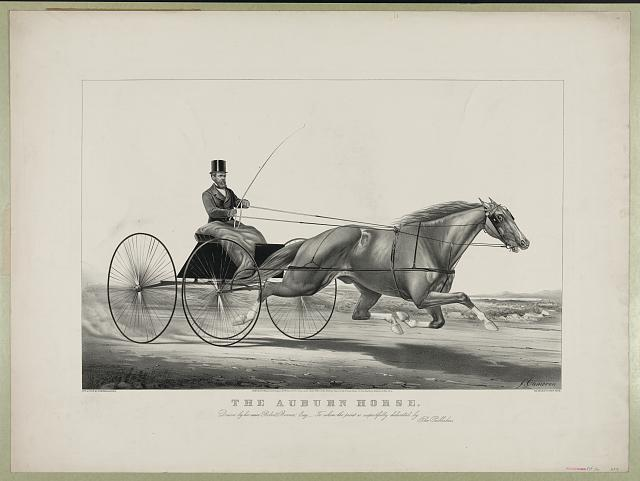 Auburn horse: driven by his owner Robert Bonner, Esq.-to whom the print is respectfully dedicated by the publishers