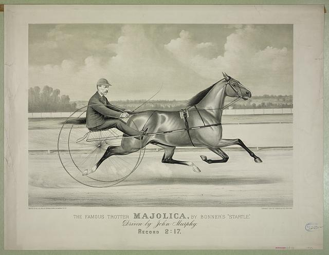 """The famous trotter Majolica, by Bonner's """"Startle"""": Driven by John Murphy"""