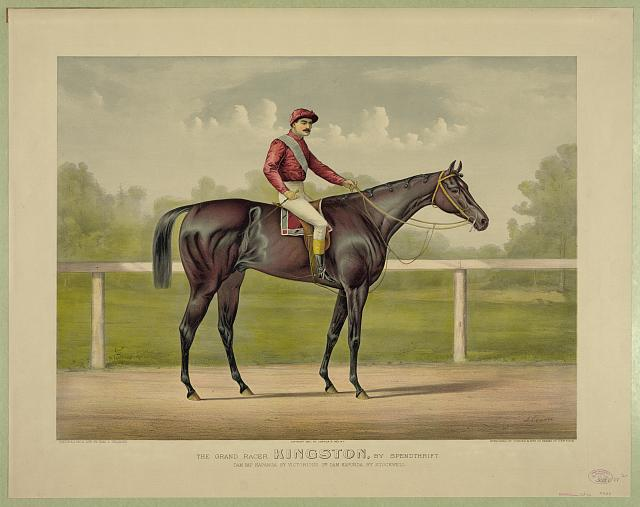 Grand racer Kingston, by Spendthrift: dam imp. Kapanga, by Victorious, 2nd dam Kapunda, by Stockwell