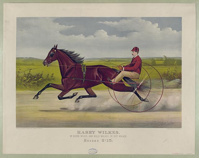 Harry Wilkes by George Wilkes - dam Molly Walker by Capt. Walker