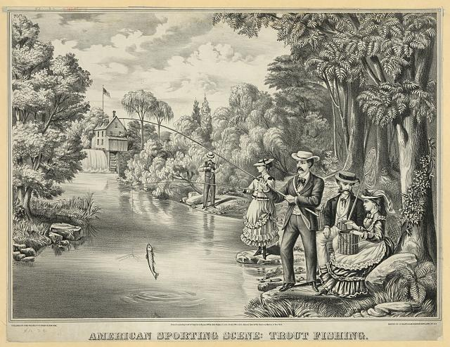 American sporting scene - trout fishing