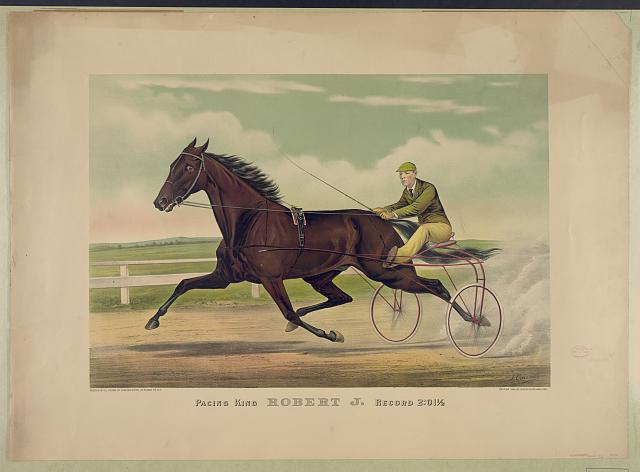 Pacing king Robert J., record 2:01 1/2