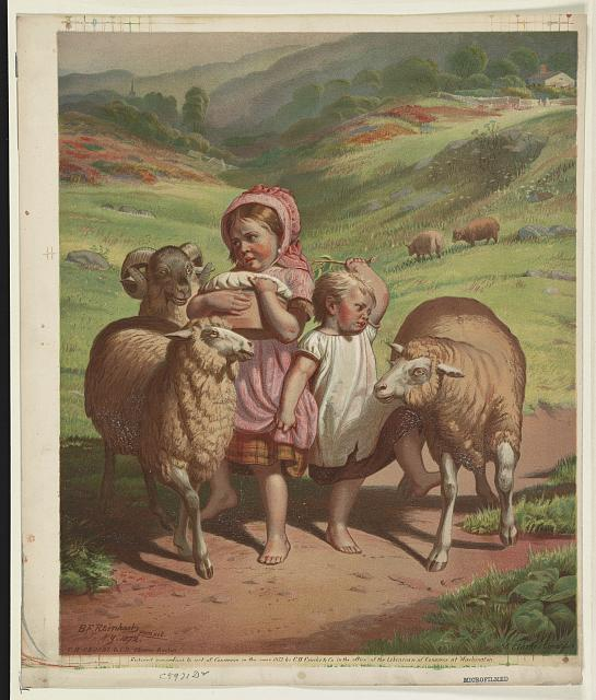 [Two children among 2 sheep and 1 ram]