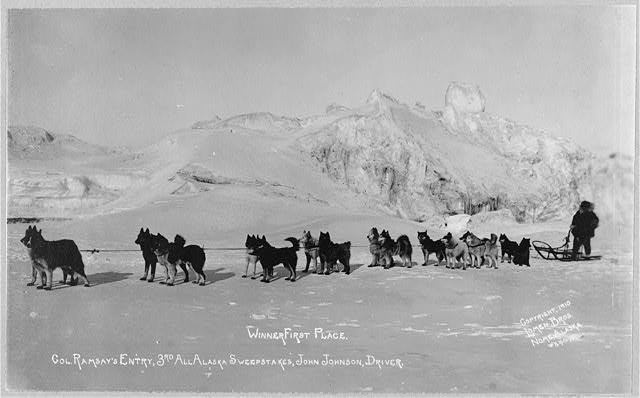 Col. Ramsay's entry, winning dog sled team of the 3rd All Alaska Sweepstakes, John Johnson, driver