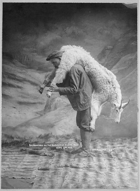 S.A. Crawford carrying a goat