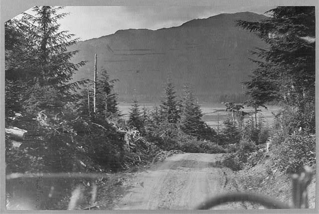 Road from Juneau to Mendenhall Glacier