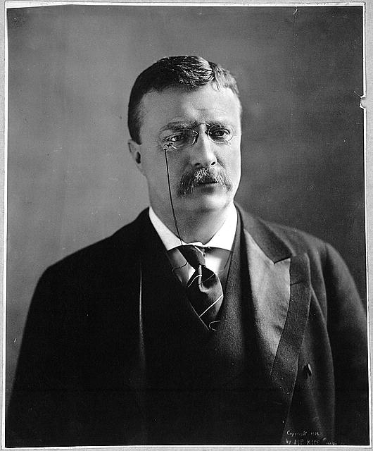 [Theodore Roosevelt, bust portrait, facing slightly right]
