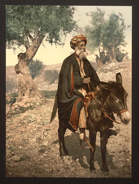 [Native of Bethlehem on his donkey, Holy Land, (i.e., West Bank)]