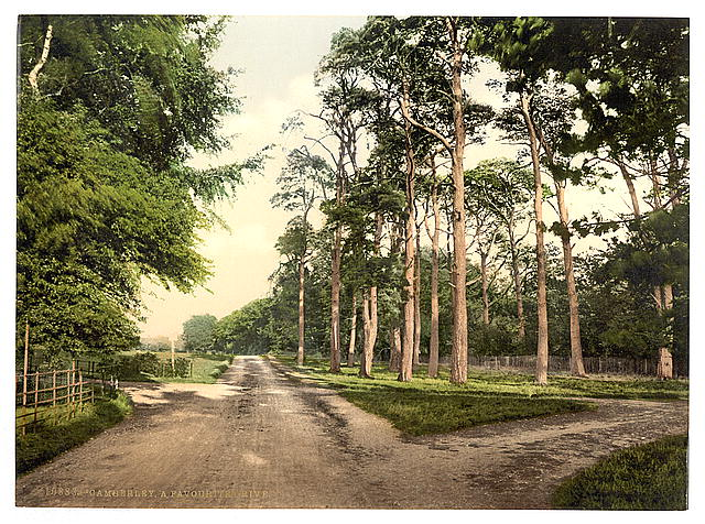 [Royal Military College, a favorite drive, Sandhurst, Camberley, England]