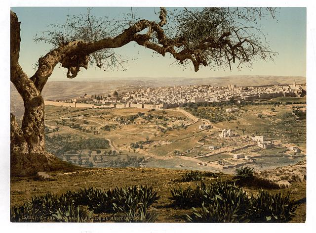 [From Mount Scopus, Jerusalem, Holy Land]
