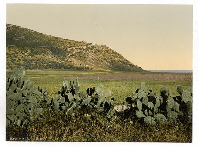 [General view, Mount Carmel, Holy Land, (i.e. Israel)]
