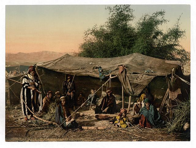 [Bedouin tents and occupants, Holy Land]