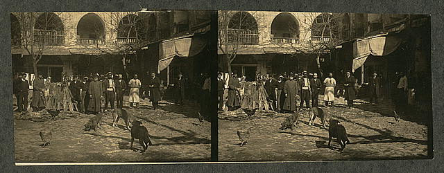 A fur shop of Constantinople, Turkey