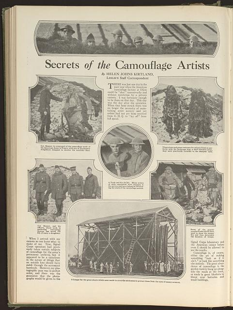 Secrets of the camouflage artists