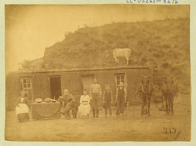 [Sylvester Rawding family in front of sod house, north of Sargent, Custer County, Nebraska]