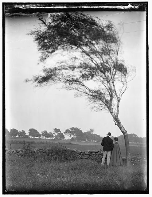 [Pastoral, a view including W. Mason Turner and Hermine Käsebier, Newport, R.I.]