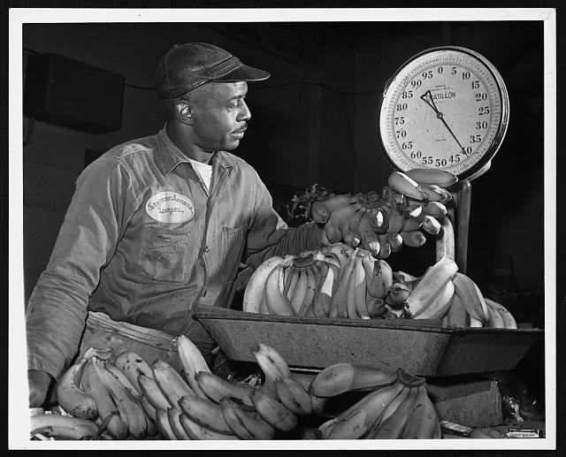 [Eugene Smallwood, an employee at Curatolo Banana Corp. weighing bananas]