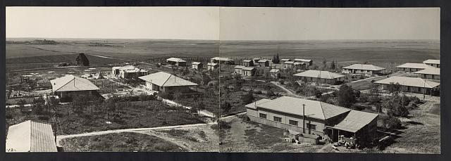 Jewish settlement of Gath (near ancient Gath), east of Gaza road